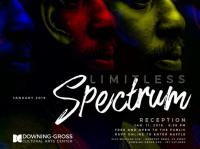 Limitless Spectrum - Gallery Reception