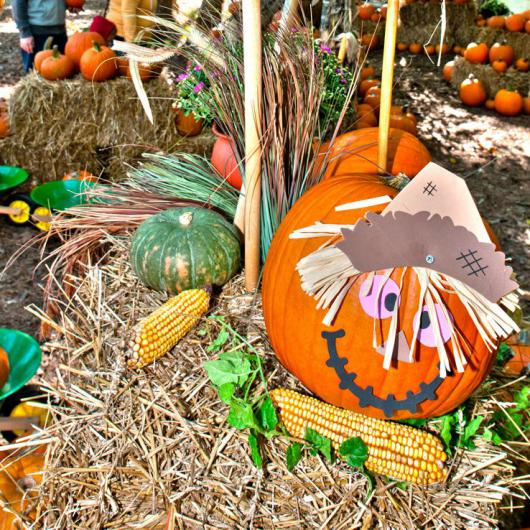 45th Newport News Fall Festival